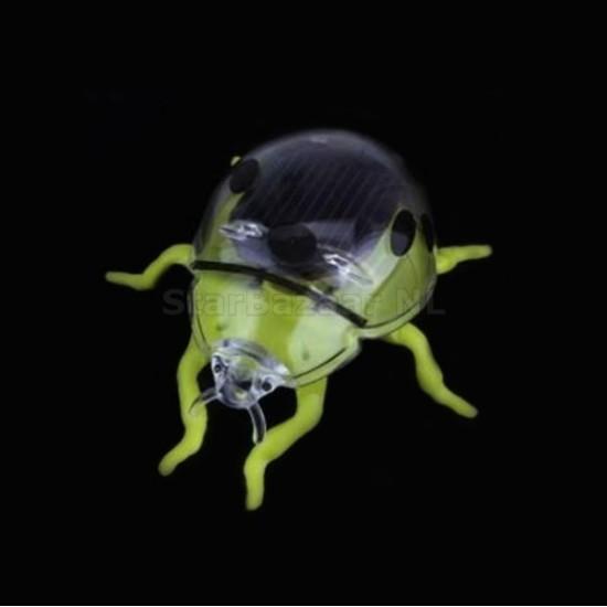 Solar Lady Beetle